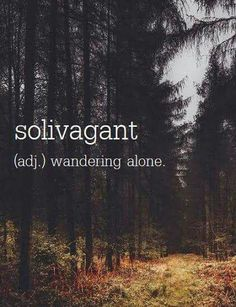 solivagant - (adj. wandering alone) a beautiful act of selflove / Inspirational quotes self love self care hope spirit spiritual meditate Buddhism Buddhist yoga heal healing happy happiness Unusual Words, Unique Words, Cool Words, Interesting Words, The Words, Pretty Words, Beautiful Words, Words Quotes, Me Quotes