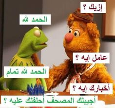 Funny Picture Jokes, Some Funny Jokes, Stupid Funny, Funny Photos, Funny Memes, Hilarious, Arabic Memes, Arabic Funny, Funny Arabic Quotes
