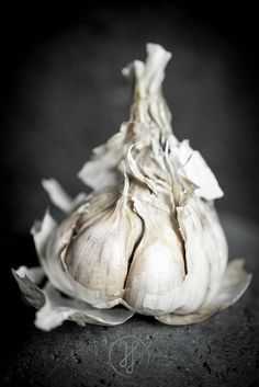 Garlic By Franck Hamel .www.photographe-culinaire.net