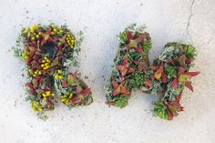 #DIYWedding Craft: Garden-inspired letters. Learn how to make these floral initials >> http://www.hgtvgardens.com/weddings/diy-his-and-her-floral-monogram?s=1&?soc=pinterest