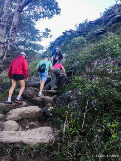 A trilha de Acesso ao topo do Morro do Pai Inácio é puxada, apesar de curta