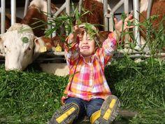 Bauernhofalltag erleben - Alltagstrott zu Hause lassen Ferienhof Ritzer im Bayerischen Wald  Welch ein Vergnügen!