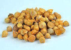 Kashmir Garlic