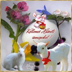 Kellemes húsvéti ünnepeket...