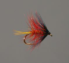 Bumble trout flies, great for river and lake brown trout fly fishing