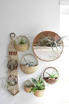 large handmade woven large wall hanging fiber art air plant hanger / plant holde… – Best Garden Plants And Planting Plant Wall Decor, Hanging Plant Wall, Hanging Pots, Hanging Air Plants, Wall Hanger, Plant Hanger, Towel Hanger, Bedroom Decor For Couples, Diy Bedroom