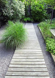 WOOD LANDSCAPING IDEAS FOR BACKYARD DESIGNS From front gate through to lawn? Pedestrian path with ability to drive through in an emergency.From front gate through to lawn? Pedestrian path with ability to drive through in an emergency. Wooded Landscaping, Backyard Landscaping, Backyard Designs, Backyard Ideas, Walkway Ideas, Wooded Backyard Landscape, Walkway Designs, Landscape Steps, Florida Landscaping