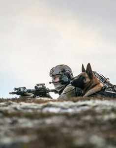 Military War K9 Soldier & Handler - God Bless and Protect both of you!