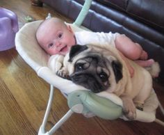 Pug lover in training!!