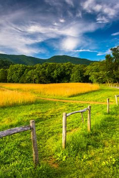 You'll find such beauty when you walk around Cades Cove in the Great Smoky Mountains National Park, TN