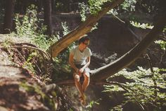 #travel #tree #wood #forest #travel Poland #summer #lato #sun #travel photography