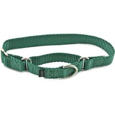 "Premier Collar, 1"" Large, Green Premier-Pet-Products http://www.amazon.com/dp/B000OGNIY0/ref=cm_sw_r_pi_dp_mxmzub12B30HX"