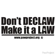 Saw this and it may start a debate, but I don't agree with it. I personally don't like declaw sx, but I do understand why owners have to do it.