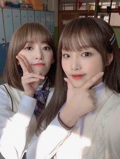 Kpop Girl Groups, Kpop Girls, Sakura Miyawaki, Yu Jin, Japanese Girl Group, Tom And Jerry, Pop Idol, Kim Min, Pretty Baby