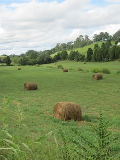 I love little country streams, sleep without dreams, sunday school in may, and hay...