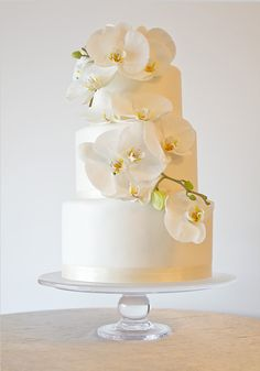 Orchids | The Pastry Studio