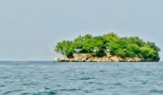 ROCK ISLAND - Small island off the coast of TRINIDAD  #Trinidad #Caribbean