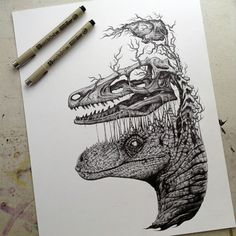 Raptor skull and brain drawing by Paul Jackson