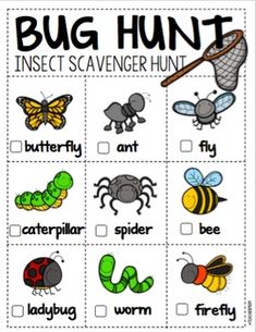 Bug Hunt: An Insect Scavenger Hunt by Denise Hill Insect Activities, Science Activities For Kids, Animal Activities, Preschool Science, Kindergarten Activities, Kindergarten Classroom, Two Years Old Activities, Scavenger Hunt For Kids, Scavenger Hunts