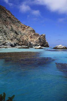 Seal Rocks ~ Catalina Island, California