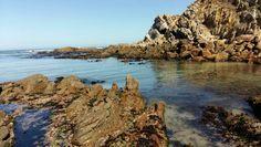 Louis Rood Strandfontein ; Natuurliefhebber se droom! Water, Outdoor, Gripe Water, Outdoors, Outdoor Games, Outdoor Living