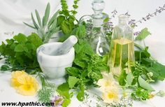 What is Homeopathy   Hpathic
