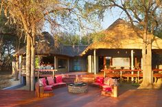 Jaci's Safari Lodge offers a variety of activities, including a Children's Photographic Workshop