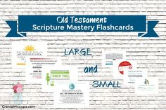 Old Testament Scripture Mastery Flashcards - a set of large and small cards great to use for seminary!