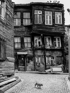 Houses, Istanbul