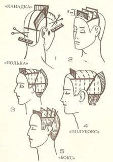 схемы стрижек для начинающих парикмахеров с описанием и фото: 24 тыс изображений найдено в Яндекс.Картинках