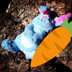 On Parenting and the Importance of Teaching Values: Suggestions for Living Easy (er)ish[ly]… Bunny Style