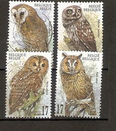 Owl postage stamps, Belgium.