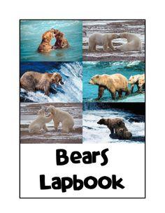 Bears Unit Study and Lapbook