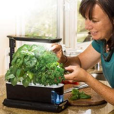 Purchase link https://amzn.to/2Klr7pe  Overview and Benefits :     Garden year-round. Grow fresh herbs, vegetables, salad greens, flowers and more in this smart countertop garden.     High-performance, full spectrum 10-watt LED lighting system is tuned to the specific spectrum that allows plants to maximize photosynthesis, resulting in rapid, natural growth and abundant harvests.     Easy-to-use control panel that automatically turns lights on and off and reminds you when to add nutrients.
