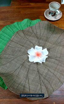 작년에 만들었던 광폭 연잎다포!!! 보통 모시는 폭이좁은데 요녀석은 광폭이라 긴쪽이 50센티가 좀 넘는다.... #모시연잎다포