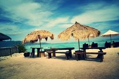 Mowie's Bar, Gili Air: See 205 unbiased reviews of Mowie's Bar, rated 4.5 of 5…