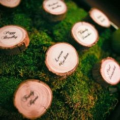 Place cards / escort cards - wood Wood chips are cheap at hobby lobby and you could wood burn names into them :D