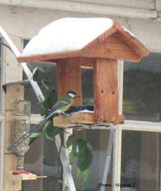 Plans de mangeoires couvertes Platform Bird Feeder, Wood Projects, Projects To Try, Bird Houses, Bird Feeders, Buffet, Plans, Palette, Birds