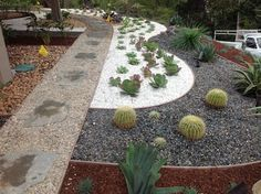 Draught tolerant desert landscaping ideas, California native, pea gravel, pebbles, succulents design in Tarzana | Yelp