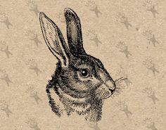 Vintage and Retro images for your creativity! by UnoPrint Hare Illustration, Ink Illustrations, Rabbit Drawing, Rabbit Tattoos, Wall Art Prints, Fine Art Prints, Vegvisir, Digital Backdrops, Hare