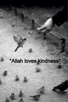Allah loves kindness. Teach children to love what Allah loves :) #Alhumdulillah #For #Islam #Muslim