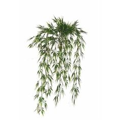 Bamboo leaf hanging bush. 32.5'' Bamboo Leaves, Green Plants, Artificial Plants, Houseplants, Decoration, Herbs, Amp, Products, Decor