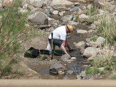 My son, Patrick, panning for gold in Prescott Valley, AZ.
