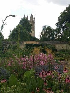 Oxford 2015, photo by Jayne Heatley