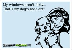 My windows aren't dirty... That's my dog's nose art!!