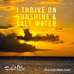 Live The Salt Life and thrive!