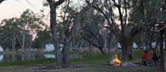 Lara Wetland Barcaldine Queensland