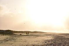 Beach in winter - Beach, winter, walking, sunlight