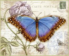 Vintage printable- Blue Butterfly postcard with rose Images Vintage, Art Vintage, Vintage Paper, Vintage Prints, Vintage Labels, Vintage Ephemera, Vintage Cards, Vintage Postcards, Illustration Papillon