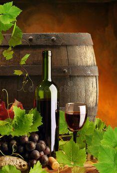 White Wine, Red Wine, Wine Ingredients, Online Galerie, Wine Vineyards, Wine Photography, Cheap Wine, Wine Fridge, Italian Wine